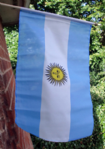 HAND WAVING FLAG - Argentina